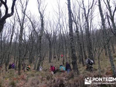 El Valle del Ambroz y la Judería de Hervás - Hervás PR-CC 36 La Chorrera;clubes de senderismo mad